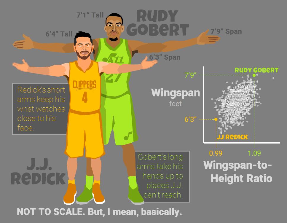 all-nba-body-team-arms